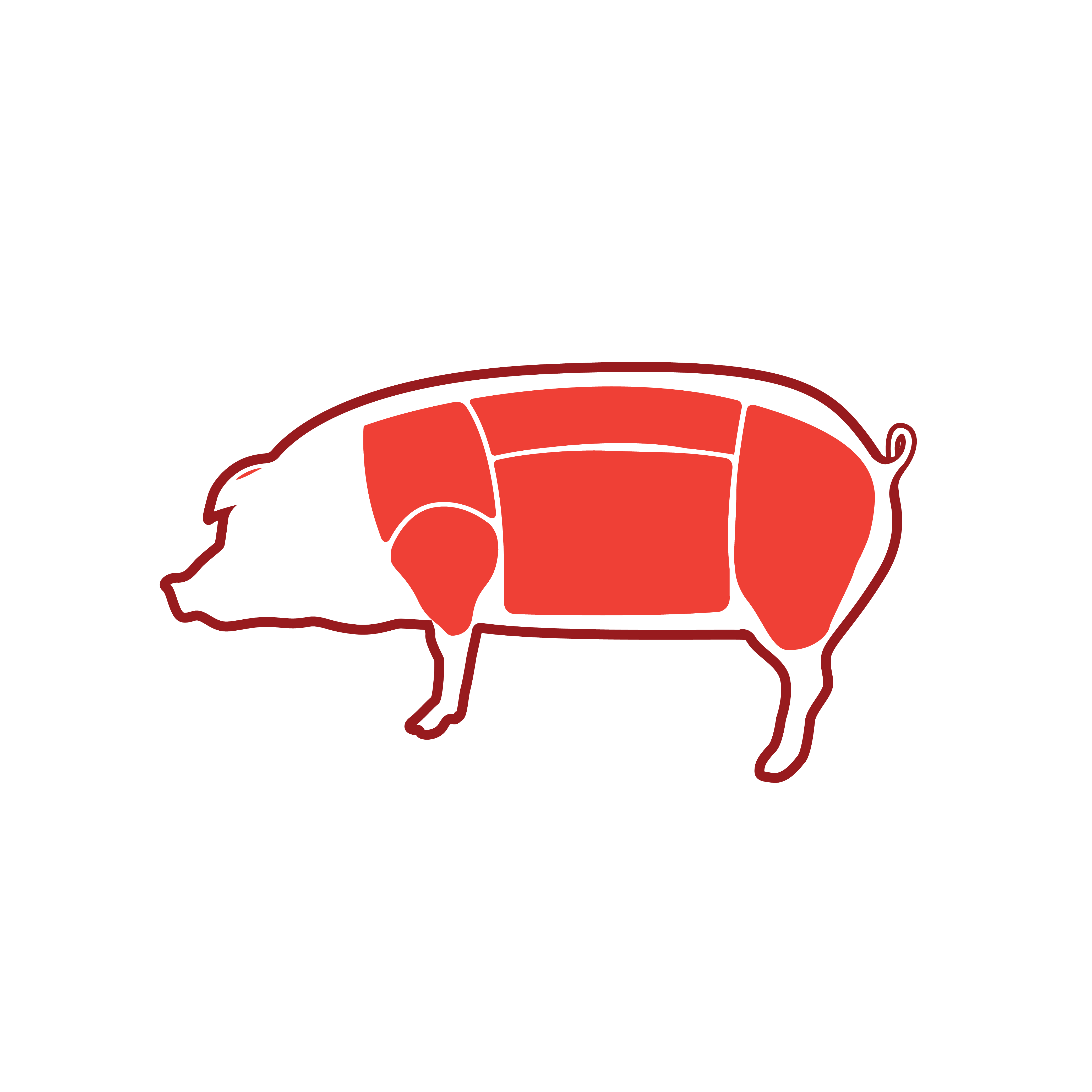 6_Conoce tu carne_Cerdo-04
