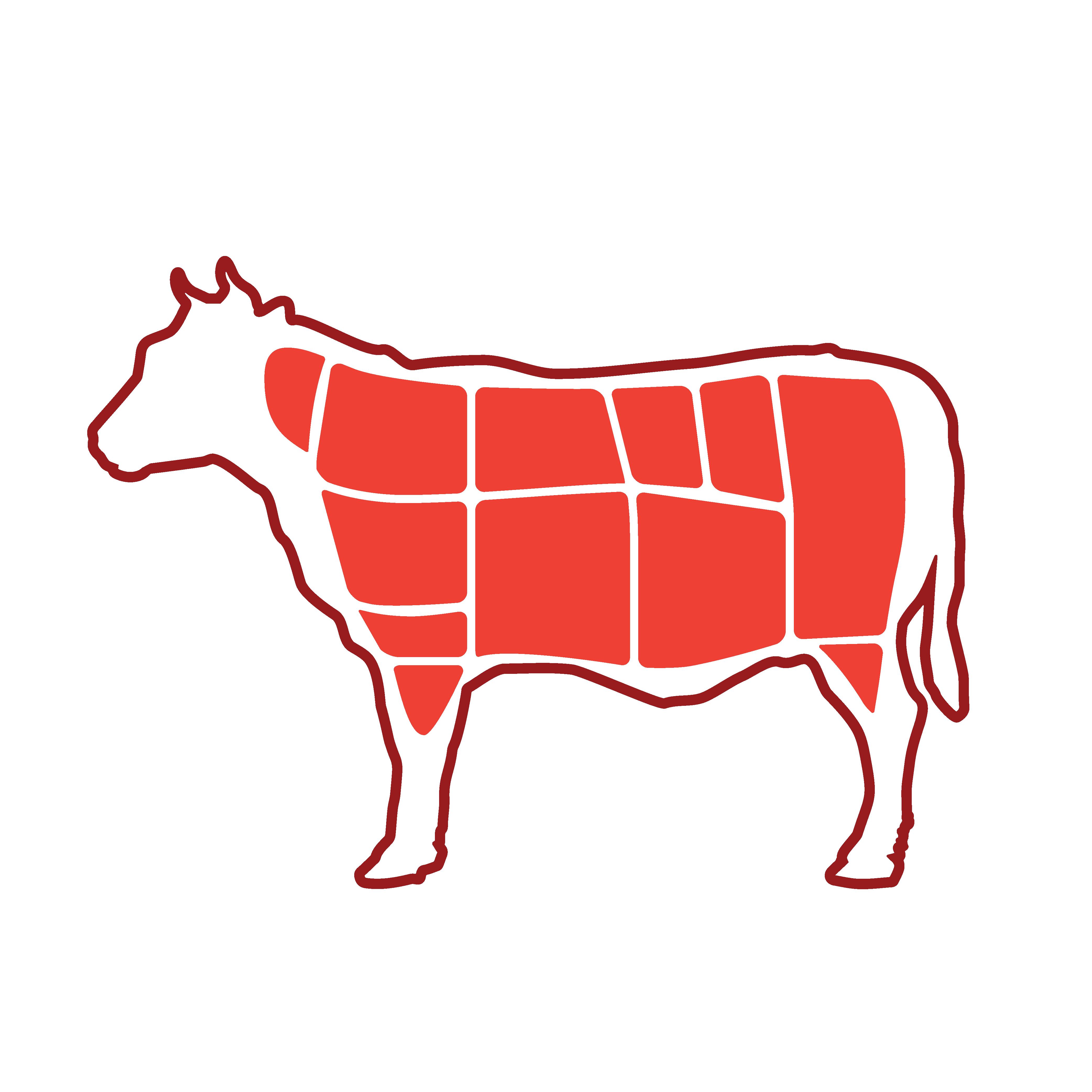 6_Conoce tu carne_Cerdo-05